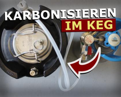 Bier karbonisieren