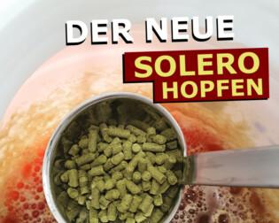 Solero IPA Rezept