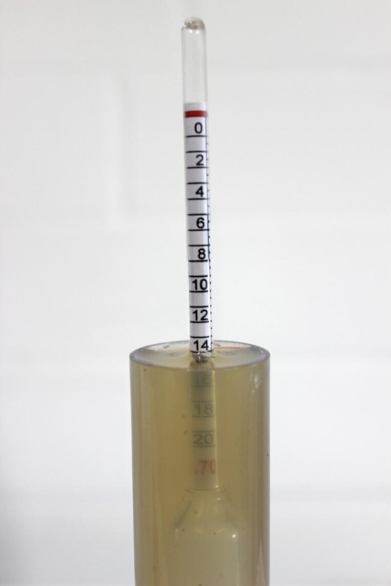 Stammwürze messen lemon lager